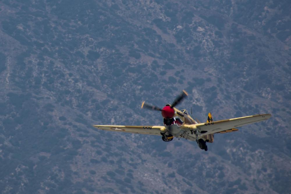 Warhawk.thumb.jpg.f072dc08a186855db20cb9121a65f18a.jpg