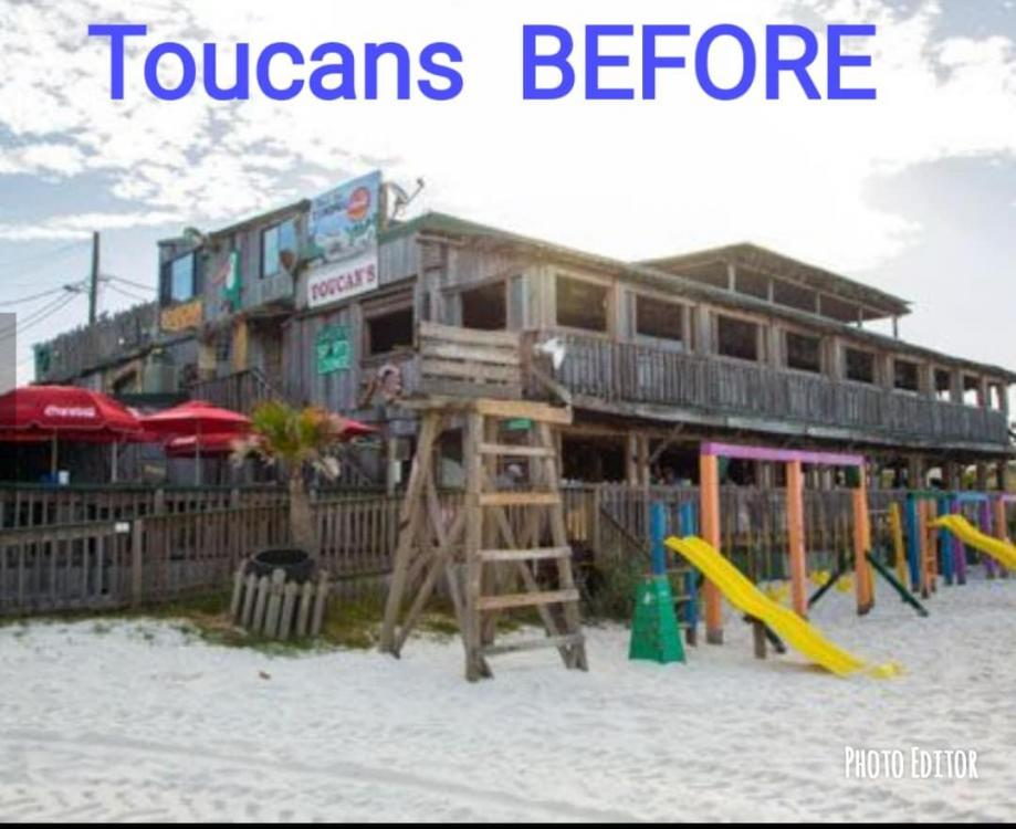 Toucans Before.jpg