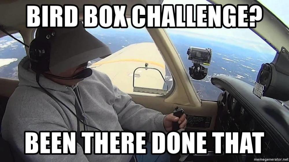 bird-box-challenge-been-there-done-that.thumb.jpg.d6e01ac629cb67ab3d8bfb11333714b5.jpg